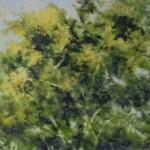 11.-Summer,-10x-12,-2008