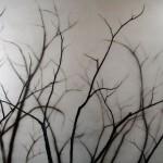 LIMBS,28x36,-2005