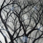 Snow-Forest,-2008